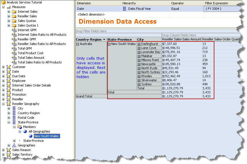 Screenshot 4 - Dimension Data Access